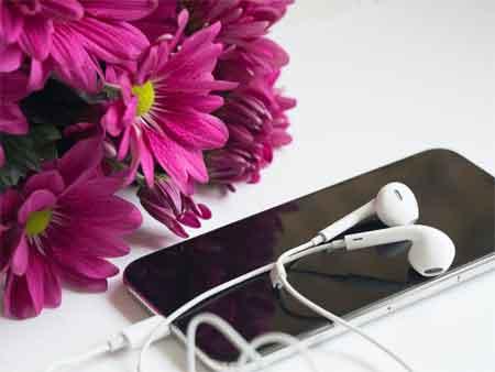 Hi-Fi Earphones