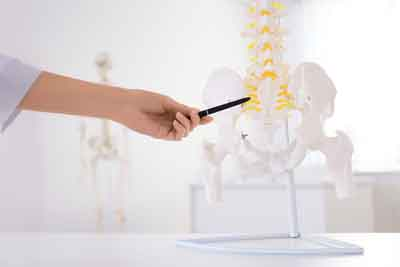 Requirements for a Chiropractic Degree