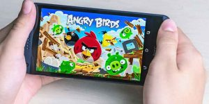 See The Angry Birds Pictures, Images, And Know Much More